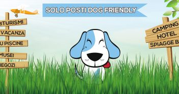 il motore di ricerca e comparazione degli hotel che accettano cani