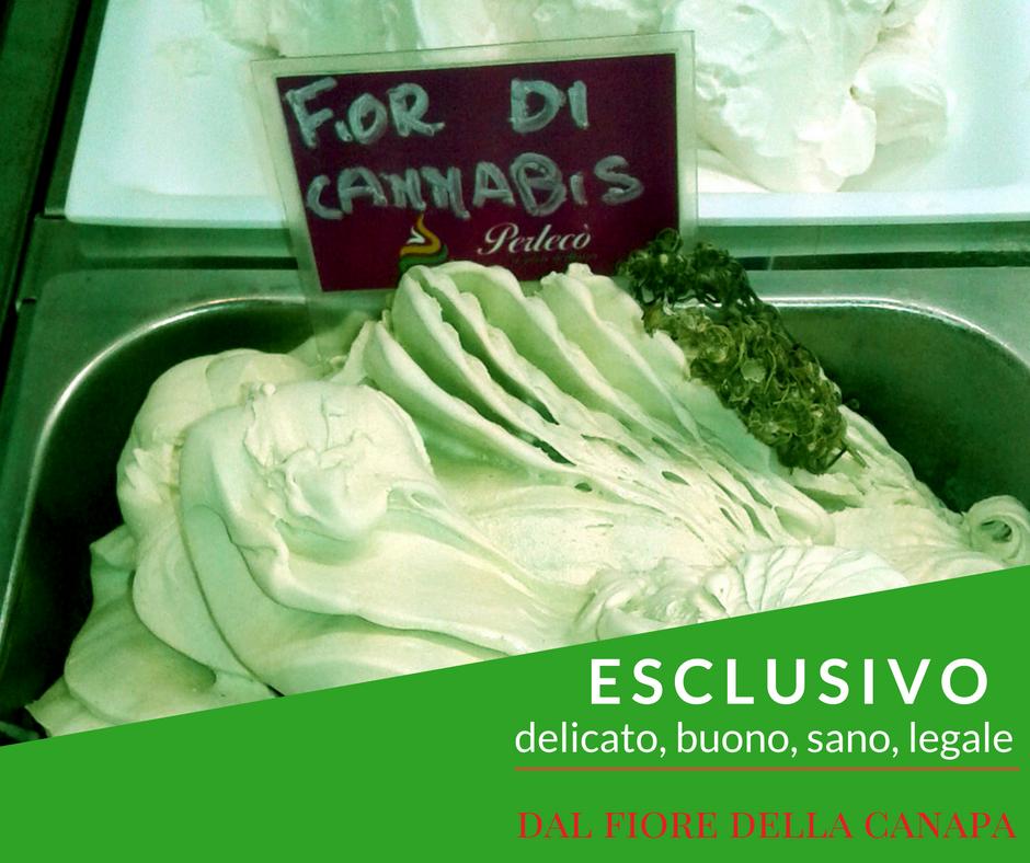Fior di cannabis, gelato alla cannabis, canapa