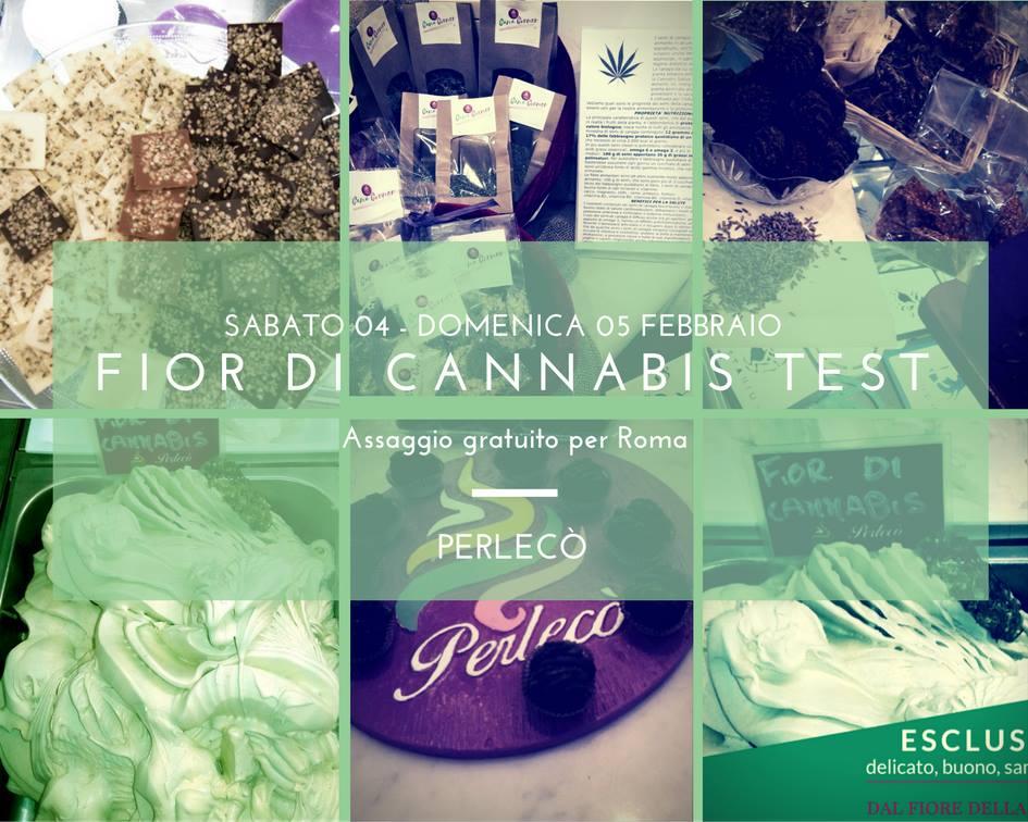 Fior di cannabis test. Assaggio gratuito del gelato alla cannabis, ad Alassio