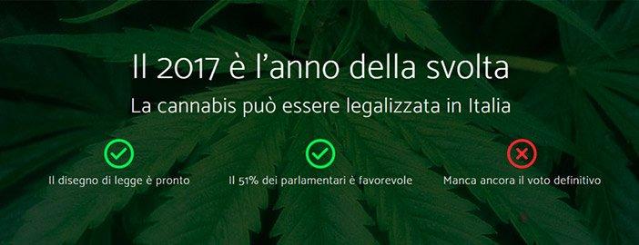 Copertina essenziale del progetto #CannabisDalBasso