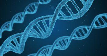 ricerca, ricercatore, gene, geni, genetica, scoperta, scoperte, medicina