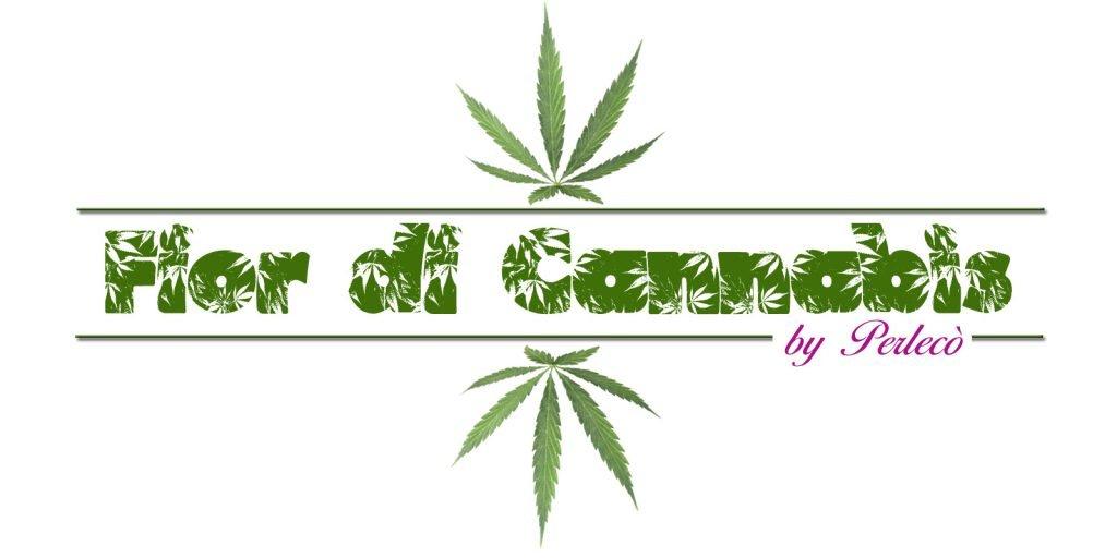 Fior di cannabis. il primo gelato al mondo alla cannabis della gelateria Perlecò di Alassio