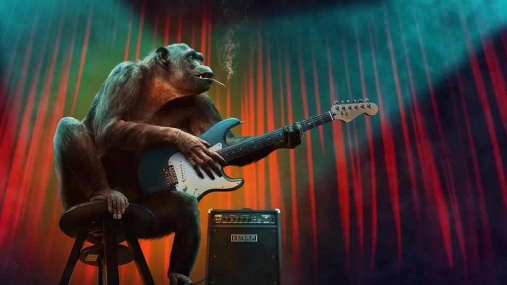 musica, scimmia, animale