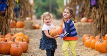 Bambini racolgono la zucca perfetta